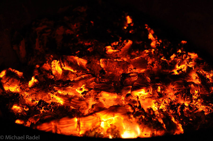 Burning Coals Fire Hugging A Tree Nature_collection