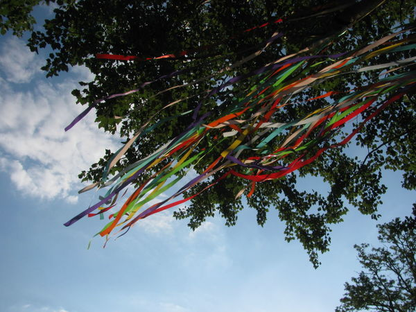 Colors Farbenspiel Des Winds Festival Season Festoon Garland Branch Colors Of The Wind Decoration Decorations Decorative Festival Festival Decoration Fluttering Flying Low Angle View Multi Colored Nature Outdoors Sky Strings Strings Attached Tree Wind Wind In Trees Wind Instrument