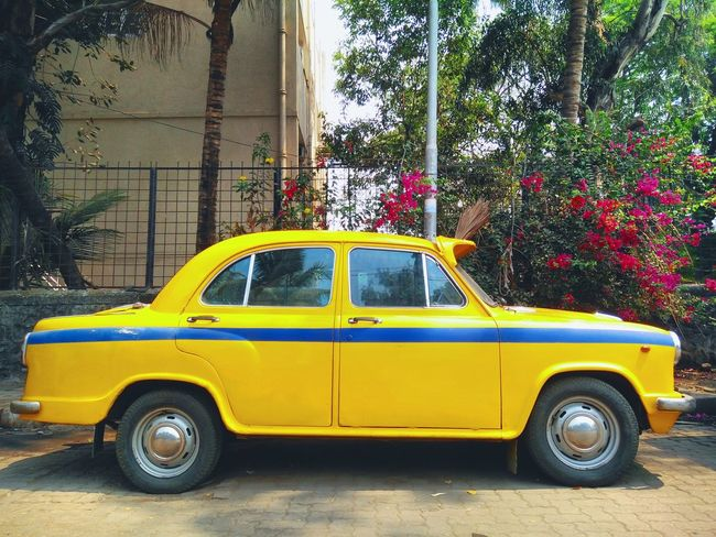 Hindustan Motars : The Royal Safari , Ambassador HindustanMotors Ambassador Blueandyellow Shine First Eyeem Photo
