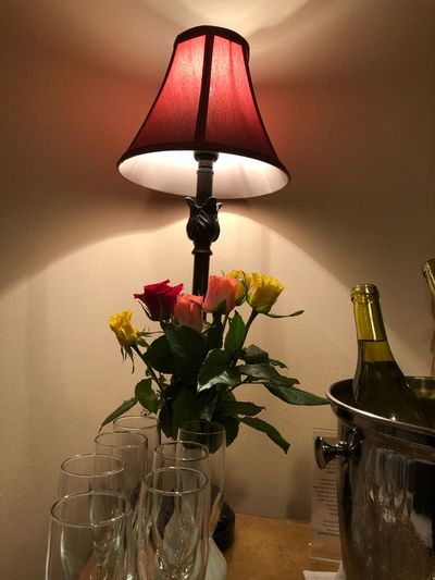 Lighting Equipment Electric Lamp Indoors  Plant Flowering Plant Wall - Building Feature Vase Flower Home Interior Illuminated Lamp Shade  Decoration Table No People Nature Glass - Material Electric Light Light Close-up Electricity