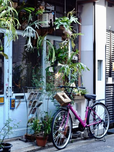 Architecture Building Exterior Built Structure Plant Bicycle Outdoors No People Transportation Stationary Growth Day EyeEm Japan EyeEm Best Shots 大阪 中崎町 Cafe オールドレンズ Vintage Lenses
