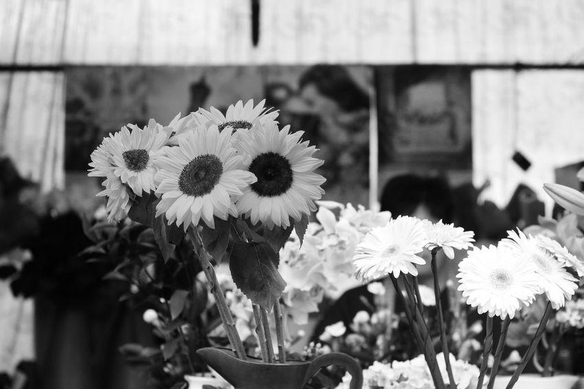 EyeEm Best Shots EyeEm Best Shots - Black + White EyeEm Gallery EyeEmBestPics The Street Photographer - 20I6 EyeEm Awards