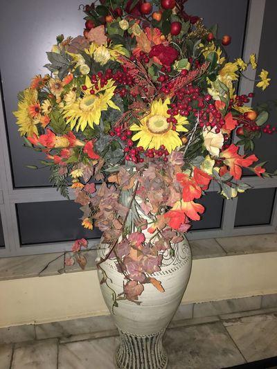 цветы Осень 🍁🍂