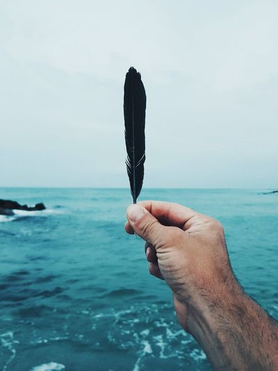 Cropped hand of feather over sea against sky