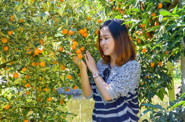 Young Adult Picking Only Women Healthy Eating Fruit Young Women Smelling Healthy Lifestyle Adults Only Juicy One Woman Only Freshness One Young Woman Only One Person Growth Plant Adult Asking Agriculture Women Garden Orange