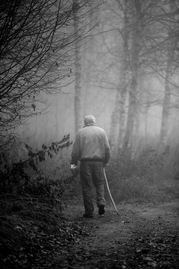 Rear View Of Senior Man Walking At Forest