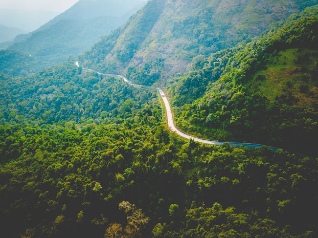 DJI X Eyeem Drone  Aerial View Beauty In Nature Curve Day Dronephotography Green Color Growth High Angle View Landscape Mountain Mountain Range Mountain Road Nature No People Outdoors Plant Road Scenics Skypixel Tranquil Scene Tranquility Tree Winding Road