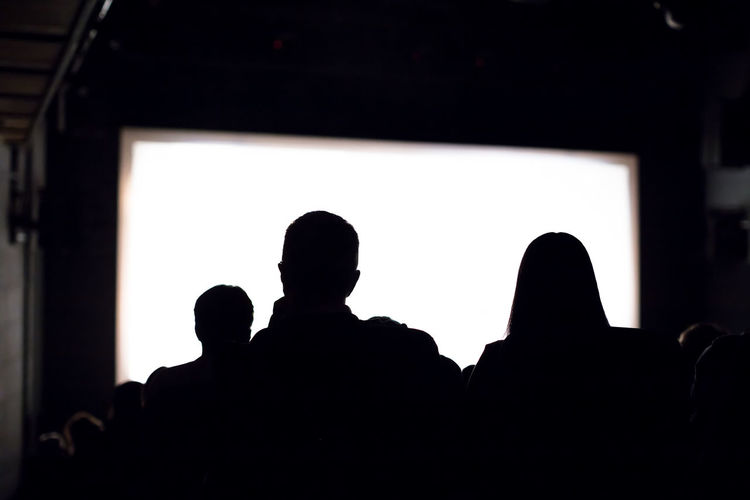 Rear view of silhouette people at music concert