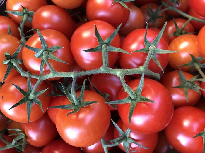 Food And Drink Vegetable Food Healthy Eating Freshness Red Tomato Wellbeing Fruit No People Large Group Of Objects Close-up Still Life Raw Food Backgrounds Market Full Frame For Sale Plant Stem Retail  Ripe