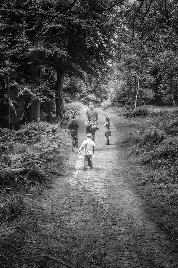 A walk in the woods Backgrounds Nature Outdoors Tree HuaweiP9 Huaweiphotography Black And White Photography Breathing Space Bw_lover Blackandwhite BW_photography Blackandwhitephotography Family❤ Family Woods Exploring AWalkInTheWoods