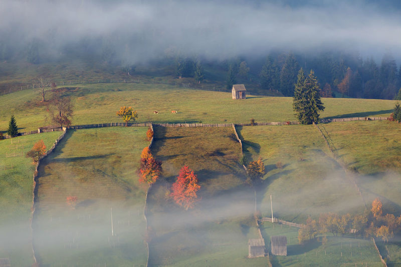 Foggy autumn morning above the traditional romanian cottages. Autumn colorful landscape in the romanian village Autumn Fall Landscape Bucovina Romania Village Countryside Forest Foliage Hut Cottage Hills Mountain Traditional