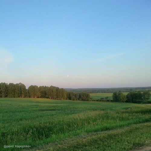 20140711 , НовосибирскаяОбласть . Сибирские околки вечером/ Novosibirsk Region. Siberian scarifiying in the evening.