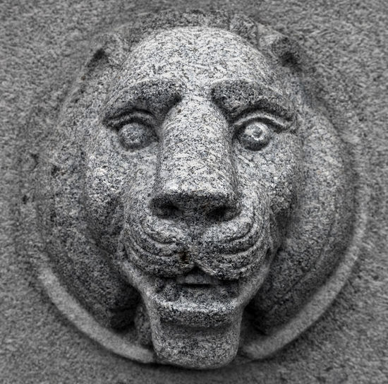 Grey Statue Lion Old Lion Statue Animal Themes Close-up Day Grey Lion Lion Statue Lion Statues No People Old Statue Outdoors Sculpture