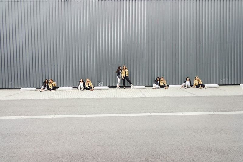 Dogs sitting on road