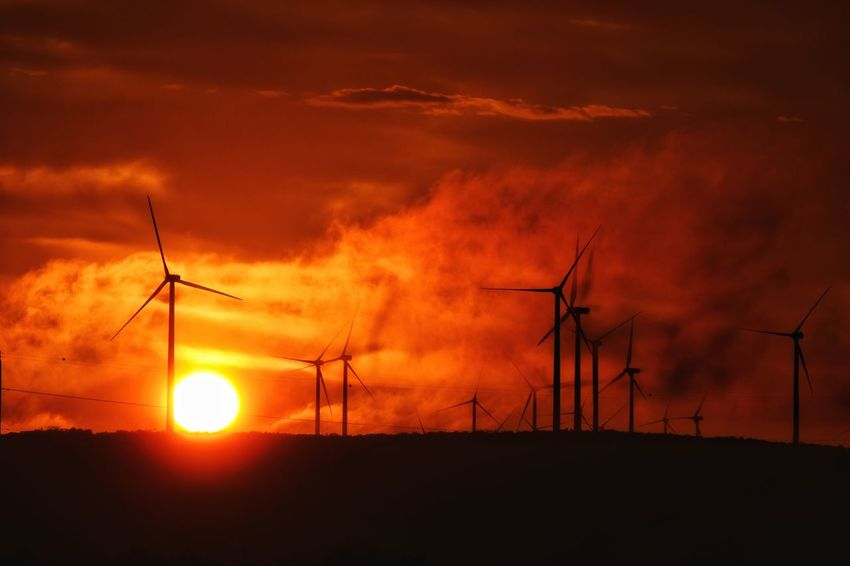 Fuel And Power Generation Electricity  Sunset Silhouette Power Supply Alternative Energy No People Power Line  Rural Scene Nature Renewable Energy Electricity Pylon Environmental Conservation Outdoors Wind Turbine Beauty In Nature Technology Sky Scenics Day Wind Turbines On A Field Wind Energy Texas Photographer Eyeemphotography Sunsetsaroundtheworld