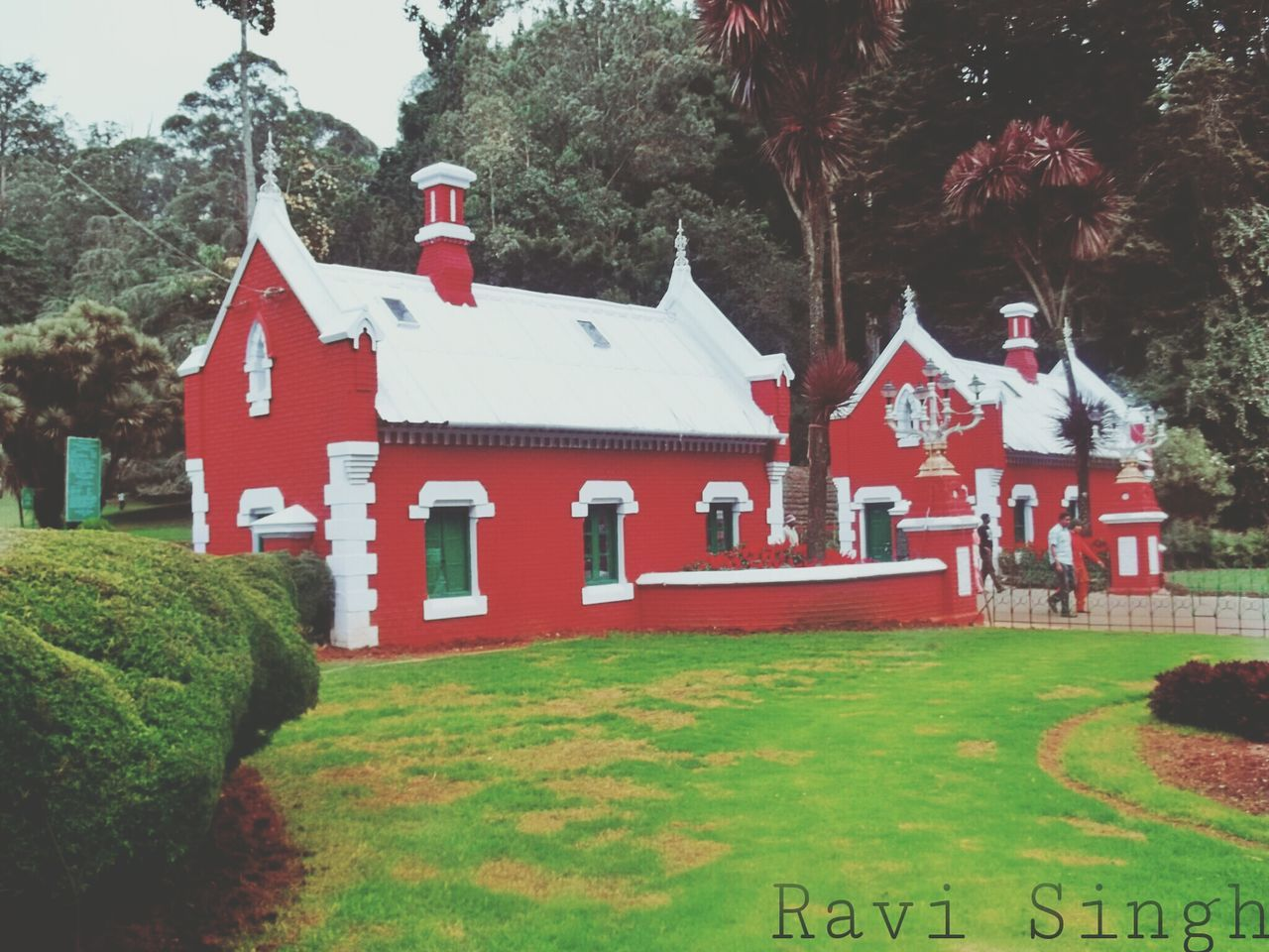 grass, tree, built structure, architecture, building exterior, religion, lawn, outdoors, day, nature, place of worship, no people, spirituality, cross, growth, beauty in nature
