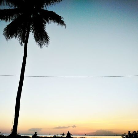 While otw somewhere. A relaxing picture at the side of the Manila Bay. Silhouette Tree Sunset Reflection Sky Water Nature Outdoors Tranquility Beauty In Nature Day Philippines Snapseed Myownphotography Snapseededit Relaxing Bay