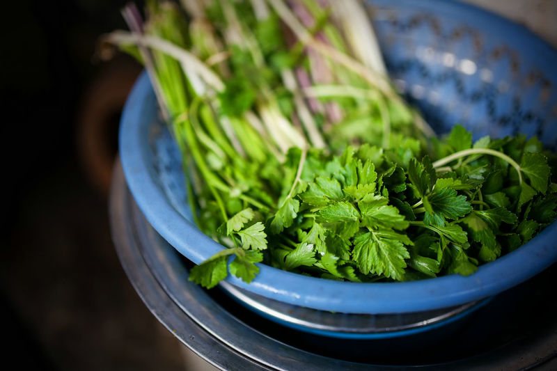 High Angle View Of Coriander Leaves In Bowl