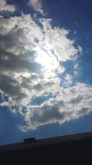 Enjoying The Sun 🌞