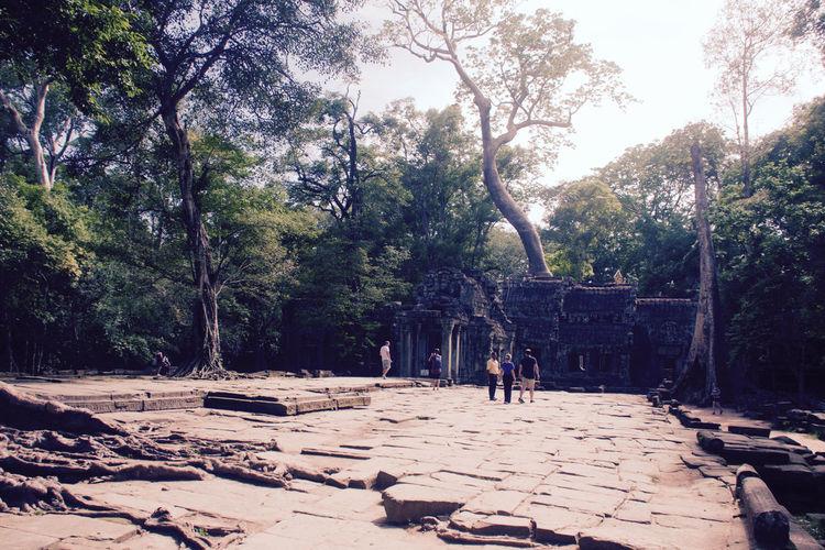 Ancient Ruins Ancient Temple Scenics Sunny Temple Entrance Tomb Tourism Travel Destinations