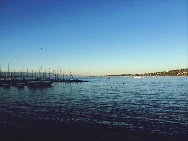 Indiansummer in Geneva on the Lake always w/ Love ?❤️