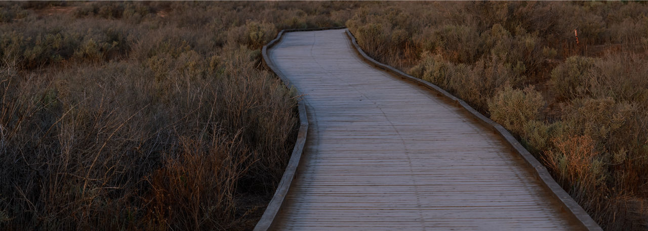 Australia Nature Path Arid Climate Barren Beauty In Nature Boardwalk Curve Day Grass Grasslands Landscape Marsh Minimalism Nature No People No People, Outdoors Scenics The Way Forward Tranquil Scene Tranquility