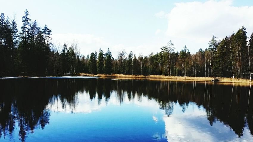 No People Heinola PhonePhotography Looking At Camera Finland Day Finland♥ Photo Photographer Lifestyles Life Photooftheday Photography Photo Of The Day Nature Photo♡ Phone Photography