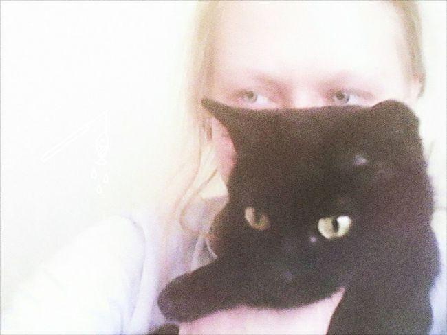 My Me My Cat Mycat♥ Myblackcat LOL