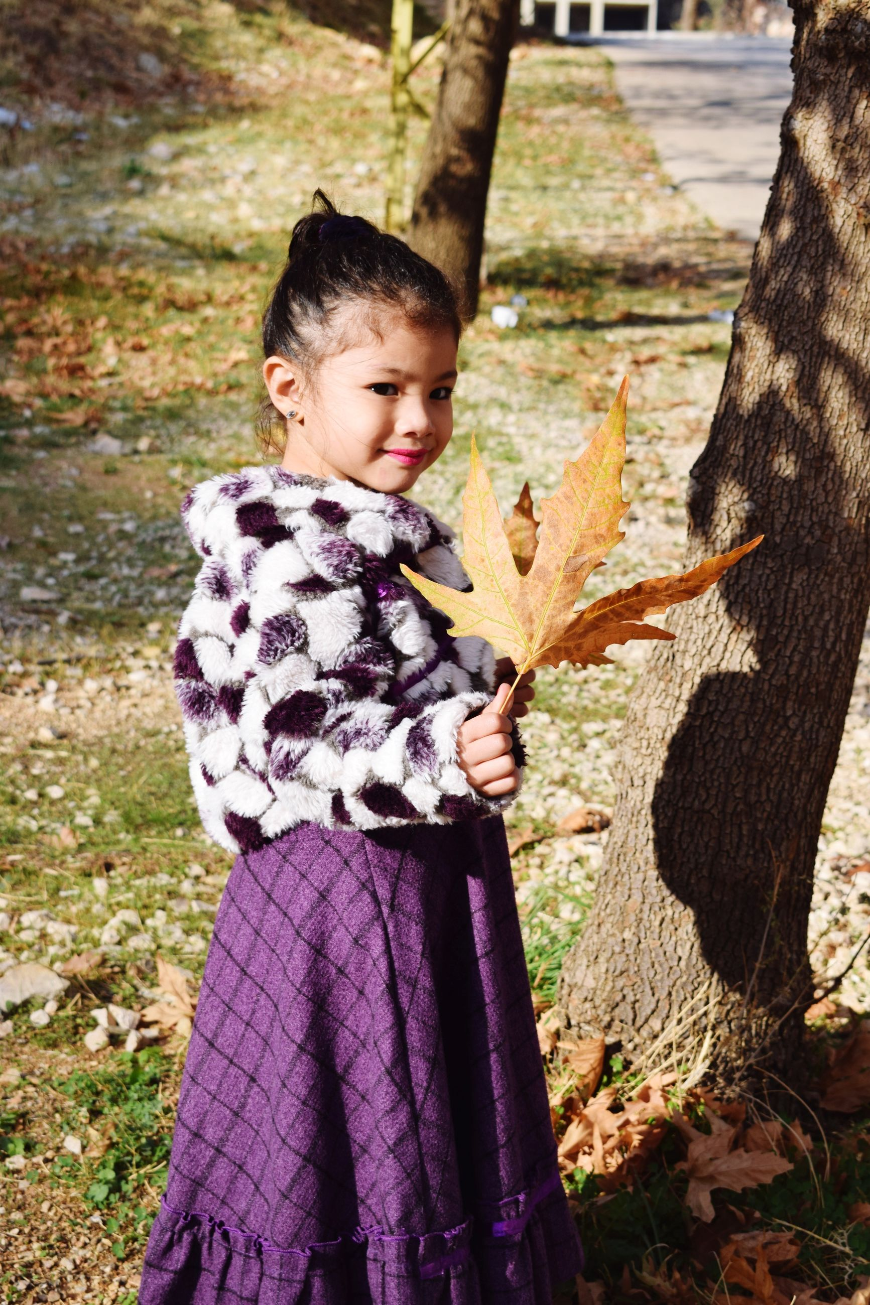 childhood, tree trunk, one person, holding, children only, outdoors, child, day, tree, people, human hand, animal themes, close-up