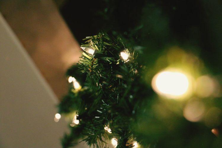 Christmas Close-up No People Christmas Decoration Illuminated Indoors  Night Holiday Lights Newyork Canonphotography