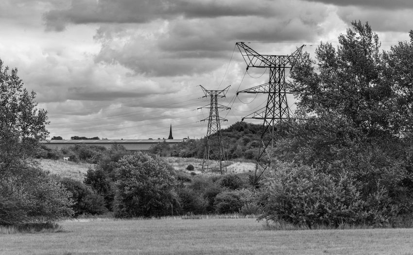 These are the fields I find the butterflies in. Unfortunately the grass has been cut so all of the flowers have gone too. Further along there's a nature reserve and they're all now fluttering around in there, Church Tower Field Fieldscape Pylon Black And White Blackandwhite Cloud - Sky Electricity  Electricity Pylon Environment Field Fuel And Power Generation Land Landscape Mono Monochrome monochrome photography Power Supply Sky Technology Tree
