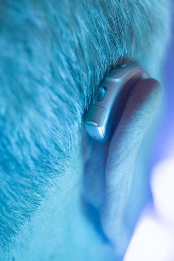 Close-up of man eye