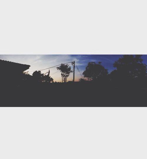 Backyard Scenery Sunset Nature