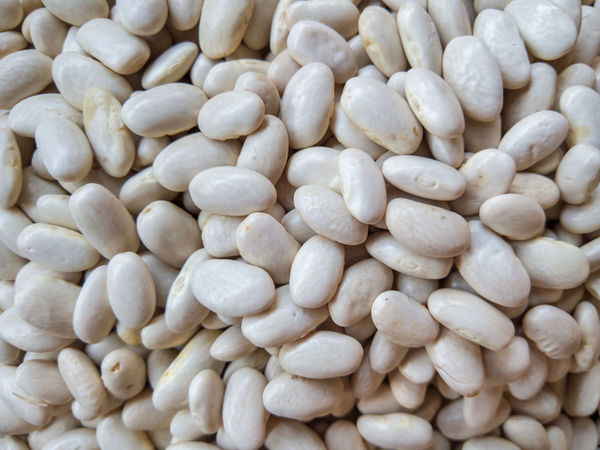 haricot_beans_6 Abundance Backgrounds Close-up Food Food And Drink Freshness Full Frame Haricot Haricot Bean Healthy Eating Heap Indoors  Large Group Of Objects Many No People Repetition Selective Focus Toughness