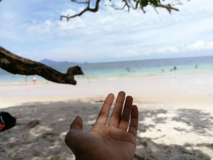Cropped Hand Of Woman At Beach Against Sky