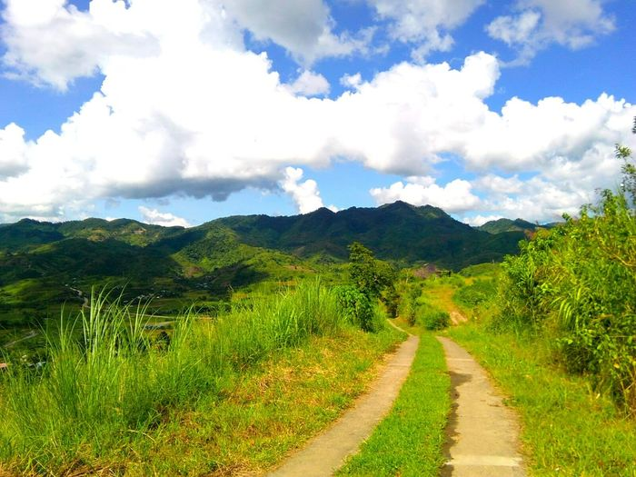 the road towards home Home Is Where The Art Is Hometown Scenery Hidden Gems  Hometown Pride Path In Nature Towards The Sky Towards The Horizon Towards The Mountain Towards Euphoria Asus Asus Camera Hello World My Hometown My Hometown Glory Philippines Photos Hidden Beauty Colour Of Life People And Places People And Places People And Places. Miles Away Break The Mold Live For The Story BYOPaper! The Street Photographer - 2017 EyeEm Awards The Great Outdoors - 2017 EyeEm Awards The Portraitist - 2017 EyeEm Awards Been There. Done That. Lost In The Landscape Be. Ready.