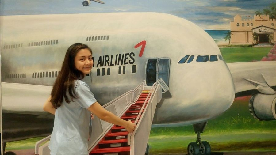 3d Painting Korean Day Airplane Paintings