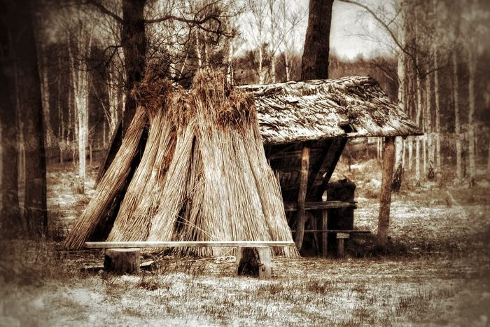Abandoned Abandoned Places Abundance Bad Condition Fishing Life Wildlife & Nature Retro Eye4photography  EyeEm Nature Lover Lake House Hut Nature Nature Photography No People Obsolete EyeEm Abandoned Roof Ruined Rural Scene Thatched Roof Village Wood Wood - Material Wooden