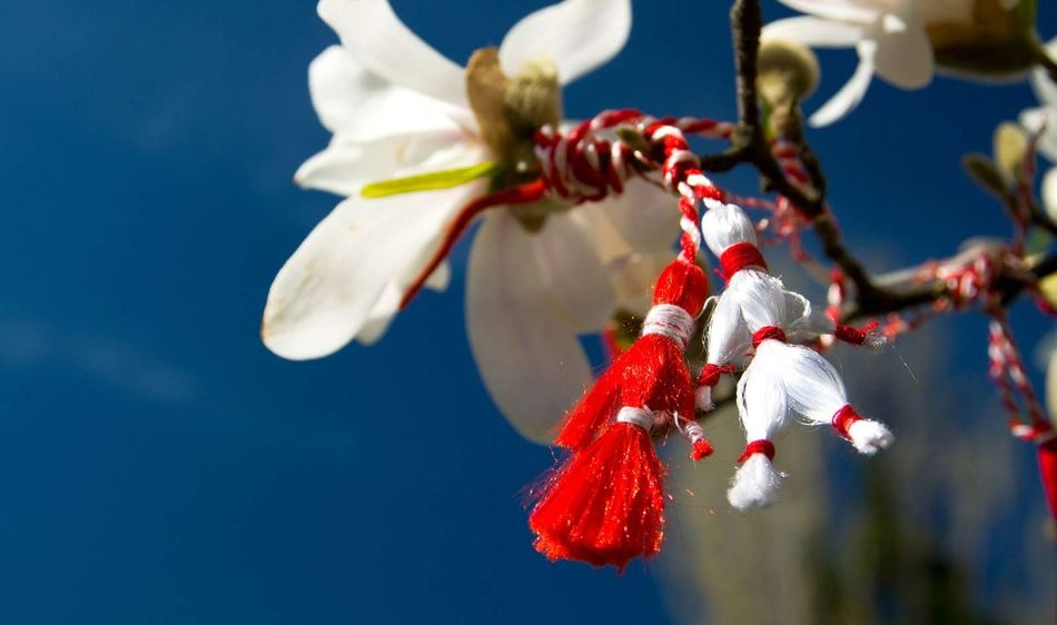 Martisor Tradition Nature Republic Of Moldova National Tradition Symbol Of Spring