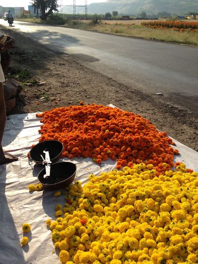 Dasera Day Dussehra Flower Flowers Food Freshness High Angle View Highway Photography India India Festival Indian Nature No People Outdoors EyeEmNewHere