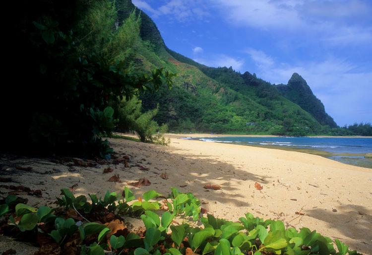 Bali Hai Hawaii