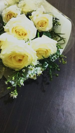 Beautiful in white Flower No People Freshness Bouquet Rose - Flower Indoors  Flower Head Close-up Nature Day White Rose Romantic Special Moments Surprise Gift Someone