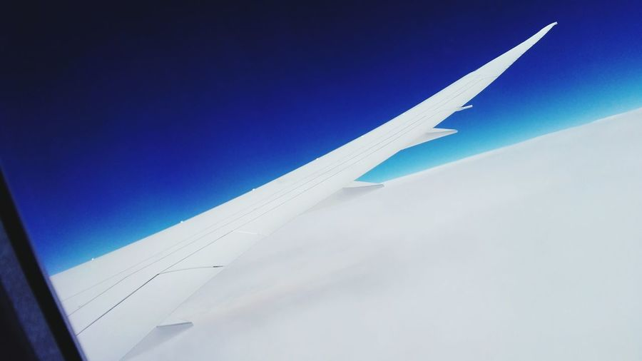 From Airplane Window