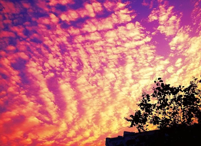 look up Atmospheric Mood Cloud - Sky Cloudy Mystery No People Outdoors Silhouette Sky Sunset