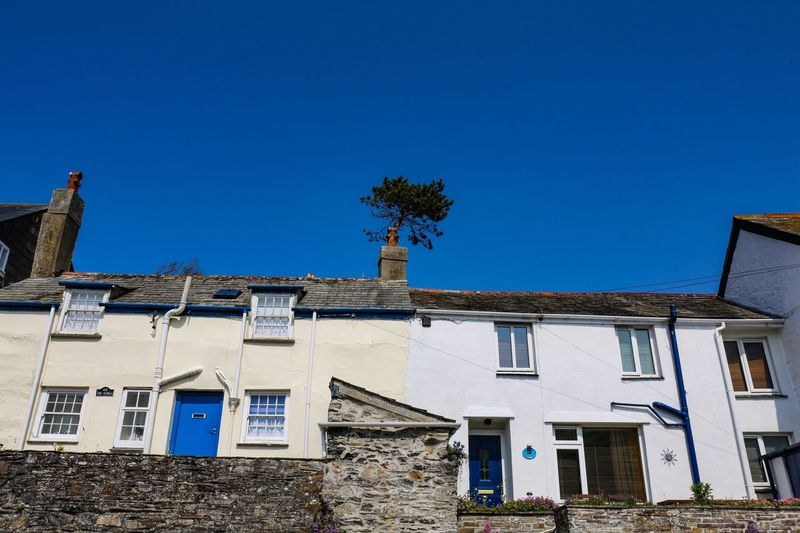 A perfectly planted tree. 😆 Building Exterior Architecture Built Structure Building Sky Blue Clear Sky Residential District House Window Nature Day Low Angle View No People Sunlight Plant Tree Roof Outdoors
