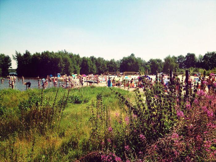 Summer Enjoying The Sun Steinhude Swimming
