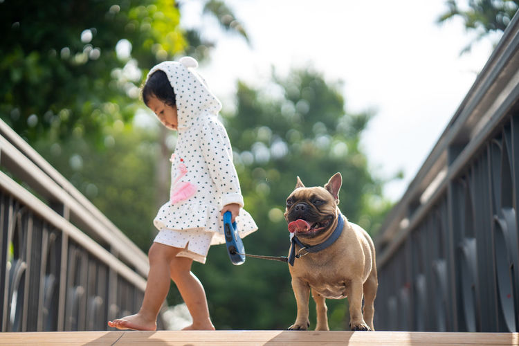 Girl standing with dog on footbridge against trees