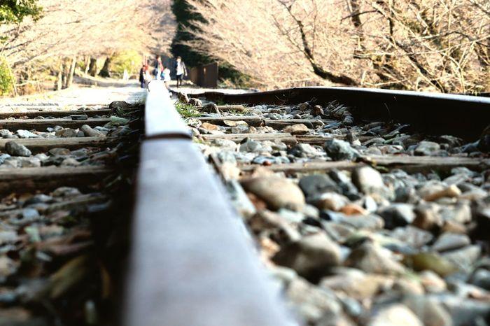 疏水 Hydrophobic LINE Shinto Shrine Japan Kyoto Winter