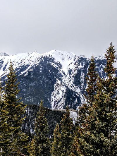 Highland's bowl Outdoors Mountain Snow Winter Vacation Skiing Aspen Colorado Rocky Mountains Mountains Tree Cold Temperature
