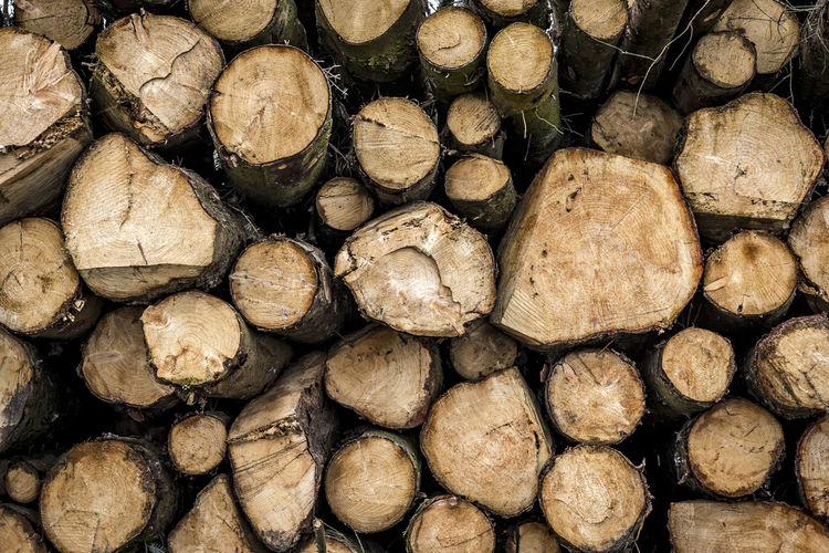 Abundance Backgrounds Close-up Day Deforestation Forestry Industry Fuel And Power Generation Full Frame Heap Large Group Of Objects Log Lumber Industry Nature No People Outdoors Pile Stack Textured  Timber Wood - Material Woodpile